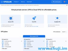 VPSSLIM 荷兰 KVM VPS 2C/4G/150G €6.15/月