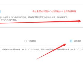 Typecho 开启HTTPS 以及加入CDN 不能登陆后台问题解决